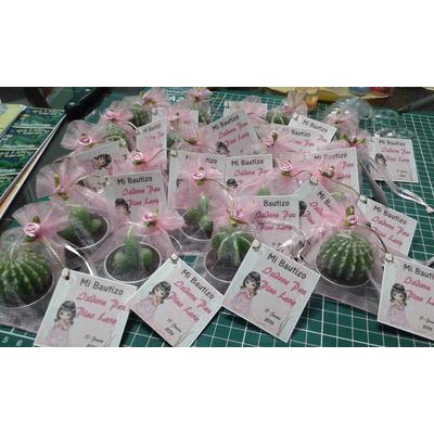 Recuerdos De Bautizo Con Cactus.Compra Recuerdos Velitas Cactus Matrimonio Bautizo