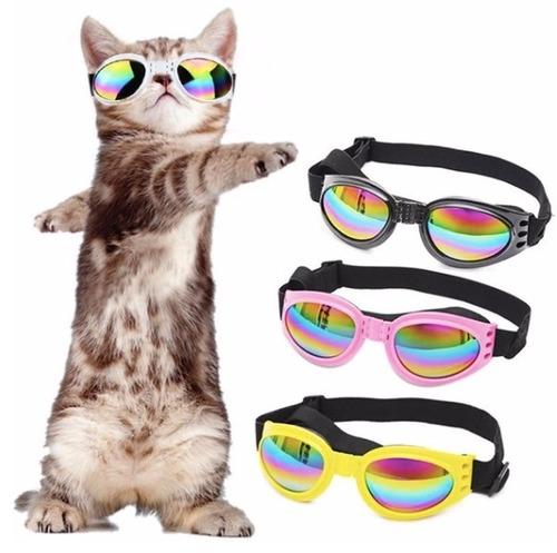 Gafas Perros Proteccion Uv