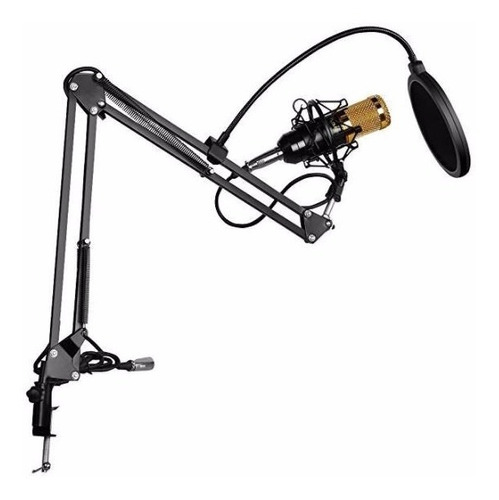 Kit Micrófono Estudio Condensador Profesional Bm800+brazo