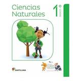 Saber Hacer Ciencias Naturales 1o A 6o Básico