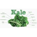 Semillas De Kale Col Rizada Super Alimento
