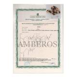 Certificado Amberos