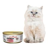 Royal Canin Intense Beauty Para Gatos Lata 165g Pethome