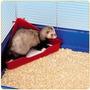 Pet In Care® Baño Letrina Para Conejos Y Hurones / Vets&pets