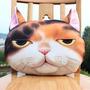 Cojin Diseño Gato Importado $8,500