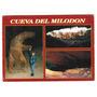Cueva Del Milodon, Postal 1994, Punta Arenas, Dinosaurios