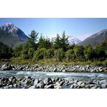 Parcela Precordillera Vegetacion Nativa Agua De Vertientes