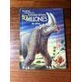 Animales De Hace 50 Millones De Años - Antiguo - Año 1962