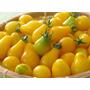 Semillas De Tomate Pera Amarillo, Envío Gratis A Todo Chile