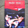 Muay Thai, The Most Distinguished, Art Of Fighting, By Panya