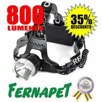 Linterna Frontal Cintillo Led Cree T6 - 800 Lum. 2 Baterias