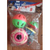 Set Multiuso Topk9 Para Gato