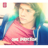 One Direction - Take Me Home Versión Harry (por Encargo)