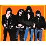 Cuadro Ramones Pintado A Mano Acrilico 45 X 30 Cms Pop Art