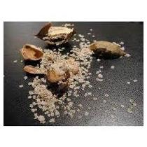 Semillas Arbol Kiri, Pawlownia Fortunei - 600 X $ 7.000