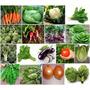 17 Hortalizas Para Tu Huerta Semillas Orgánicas Envío Gratis